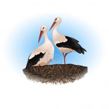 Illustration for Animals, birds, illustrations, nest, stork, vector, painting, - Royalty Free Image