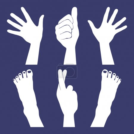 Illustration for Hands and feet silhouettes. - Royalty Free Image