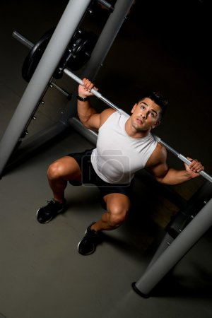 Photo for Fitness Trainer Doing Barbell Squats - Royalty Free Image