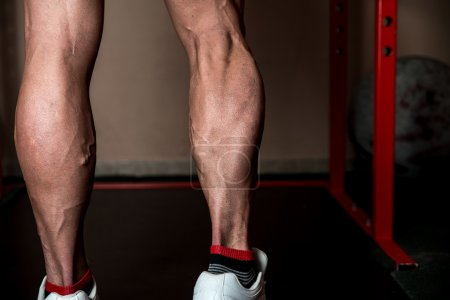 Muscular Man Calves