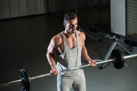 Photo for Young Athlete In The Gym Performing Biceps Curls With A Barbell - Royalty Free Image