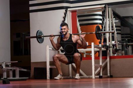 Photo for Young Men Doing Barbell Squats - Royalty Free Image
