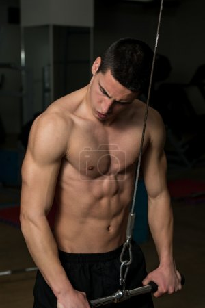 Photo for Young Athlete Exercise In The Gym - He Is Performing Triceps Push-Downs - Royalty Free Image
