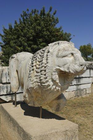 Didyma Apollon Temple...