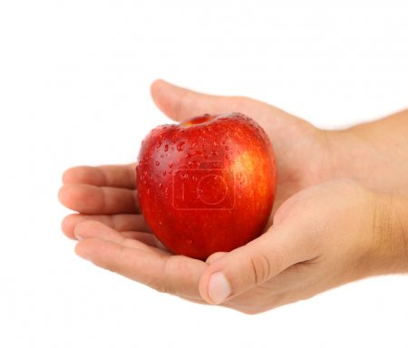 Hand holds red wet apple