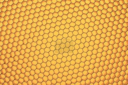 Hexagonal mesh.
