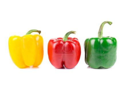 Foto de Tres pimientos coloridos aislados sobre un fondo blanco - Imagen libre de derechos