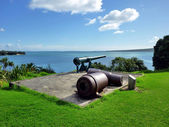 Historická zbraň na north head v Devonportu