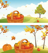 Vector harvest backgrounds with ripe apples pears and pumpkin