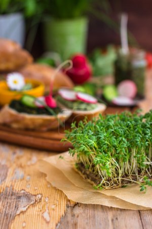 Photo for Vegan food background with fresh cress in the foreground. Selective focus - Royalty Free Image