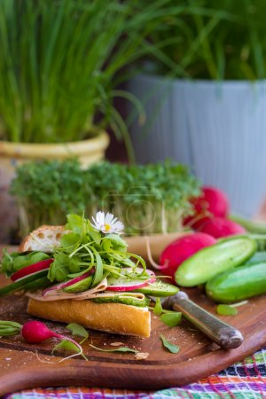 Photo for Baguette with green pesto, thin slices of vegan sausage and vegetables, Garnished with fresh daisy, Selective focus - Royalty Free Image