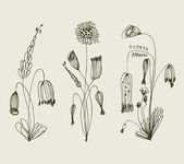Grungy floral set Collection of vintage bouquets Compositions with sketchy flowers