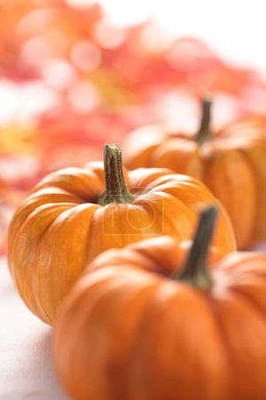 Pumpkins and autumn leaves background.