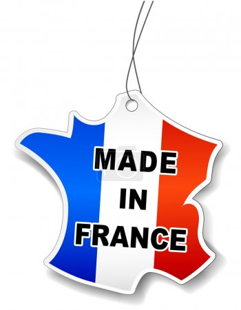 Vector illustration of France map for