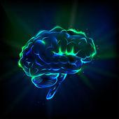 Poster Shining brain