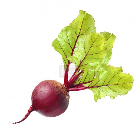 Beetroot with leaves