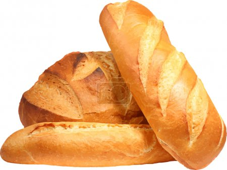Fresh bread. Vector illustration....