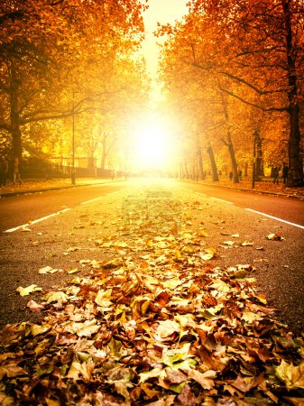 Photo pour Fallen Leaves dans une rue de Londres - image libre de droit