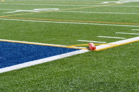 Artificial turf and endzone