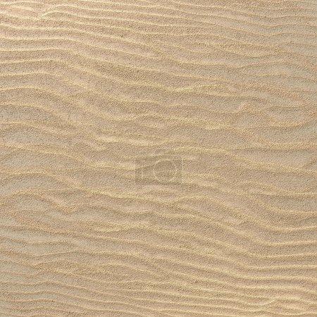 Desert, sand texture, seamless, 3d