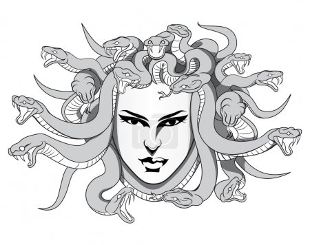 Medusa with poison snakes vector in eps10