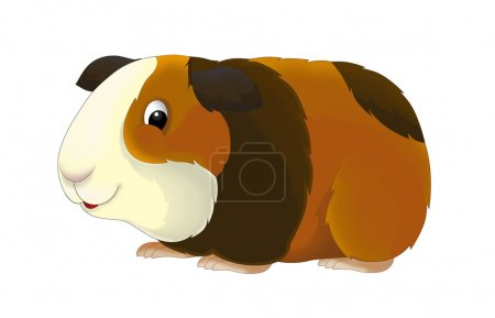 The cartoon guinea pig