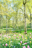 Sunny garden with trees and flowers
