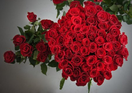 Photo for Bunch of Roses - Royalty Free Image