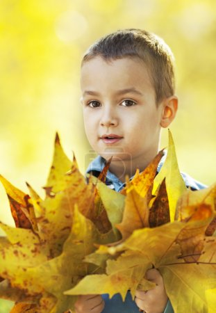 Little boy with yellow leaves