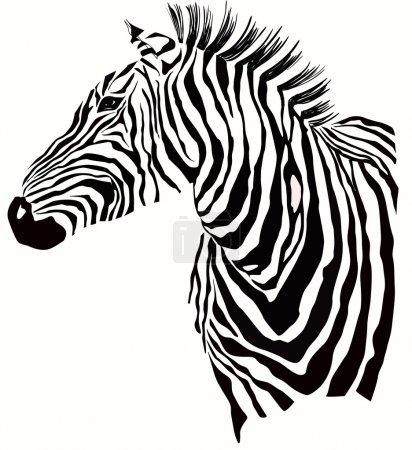 Illustration for Animal illustration of vector zebra silhouette - Royalty Free Image