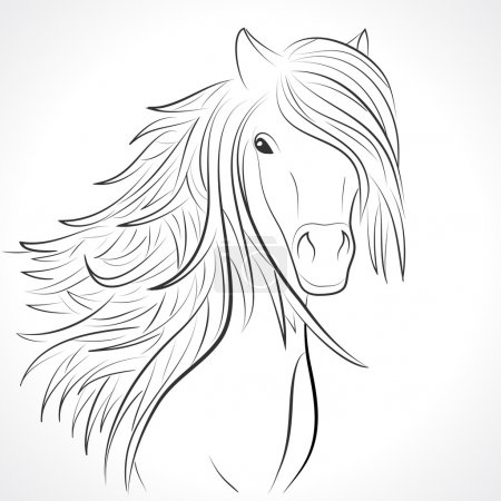 Sketch of horse head with mane on white. Vector