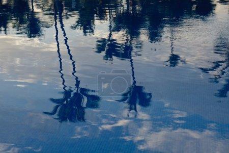 Photo pour Les paumes de réflexion de haut sur l'eau dans la piscine - image libre de droit