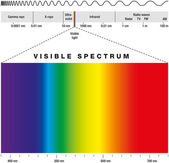 Electromagnetic spectrum of all possible frequencies of electromagnetic radiation with the colors of the visible spectrum