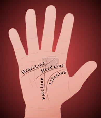 Illustration pour Menuiserie - Main droite avec les quatre lignes principales et leurs noms. Illustration vectorielle sur fond dégradé rouge . - image libre de droit