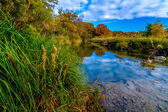 A Beautiful Fall Scene with Stunning Colors, in Texas.