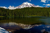 Beautiful Reflection of Snow Capped Mount Rainier with Clear Blue Skies, Green Pine Trees, and Crisp Mountain Air.