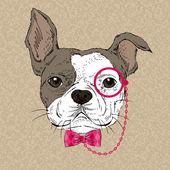 Francouzský buldoček růžová kravata luk a monokl