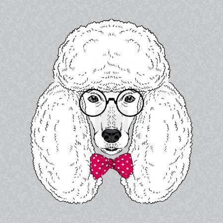 Hand Drawn Vector Fashion Portrait of Poodle