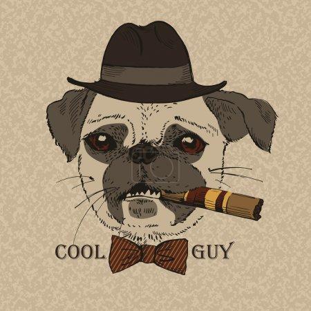 Illustration pour Portrait de Pug-dog avec cigare, Cool Guy, look gangster, illustration vectorielle - image libre de droit