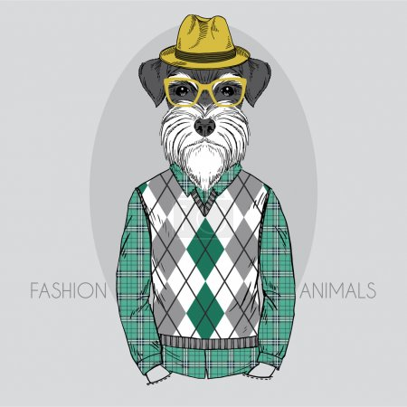Schnauzer Hipster in colors