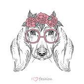 Hand drawn fashion portrait of dachshund isolated on white