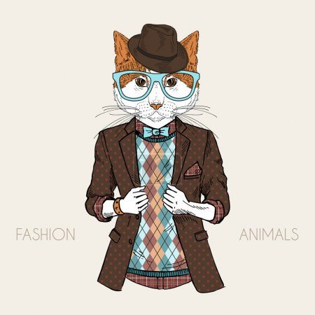 dressed up cat
