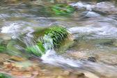 stream scenery in Zhangjiajie National Geological Park