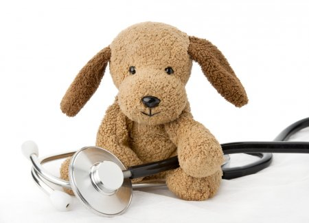 Puppy toy with medical equipment...