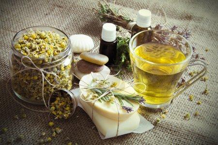 Photo pour Ingrédients pour le traitement spa naturel. Camomille biologique en pot, thé à la camomille, cailloux, savons faits à la main, huile et herbes - image libre de droit