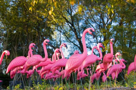 Dramatic Fake Flamingo Flock In The Forest