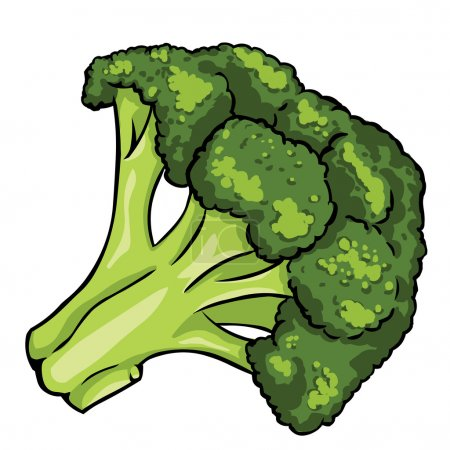 Vector broccoli