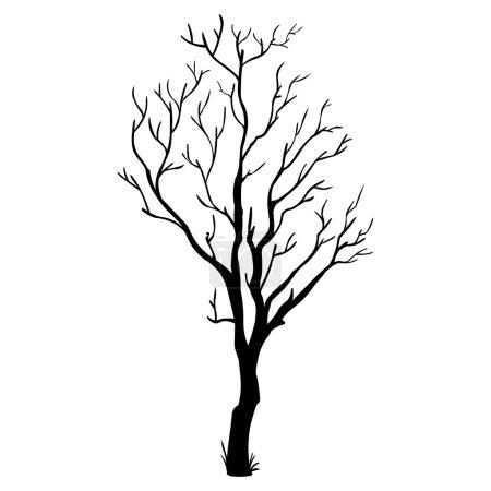 Illustration pour Silhouette vectorielle noire d'un arbre nu - image libre de droit