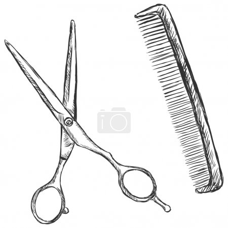 Vector sketch illustration - scissors and comb