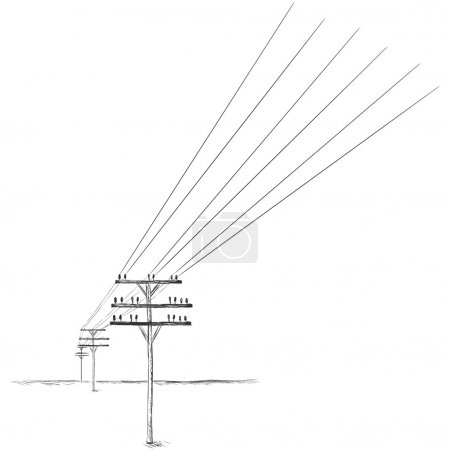 Vector Sketch Power Line